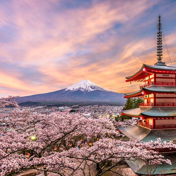 Japanese Courses in Tokyo