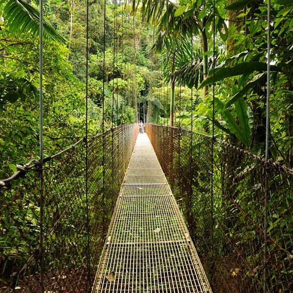 Hanging Bridges in Costa Rica Arenal National Park