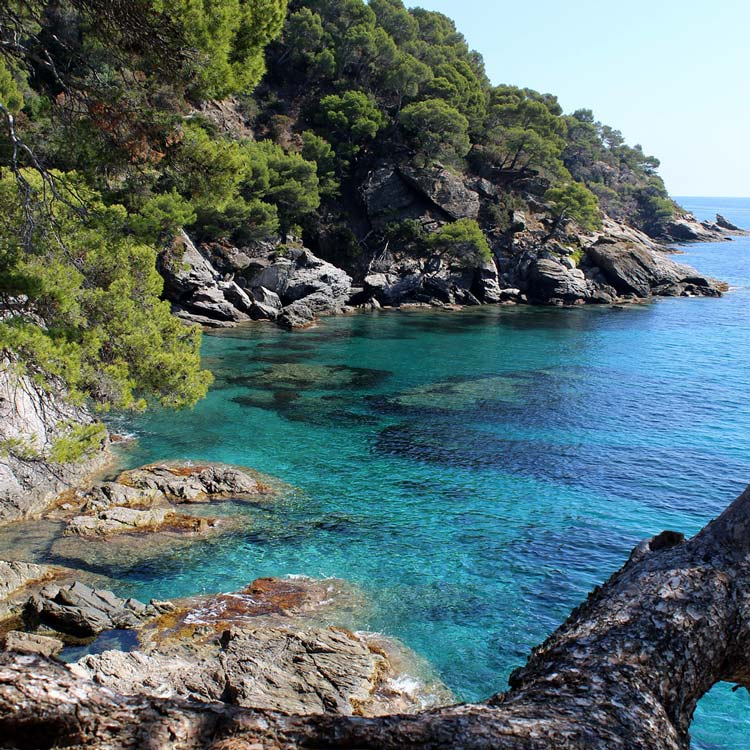 Sea View in Provence