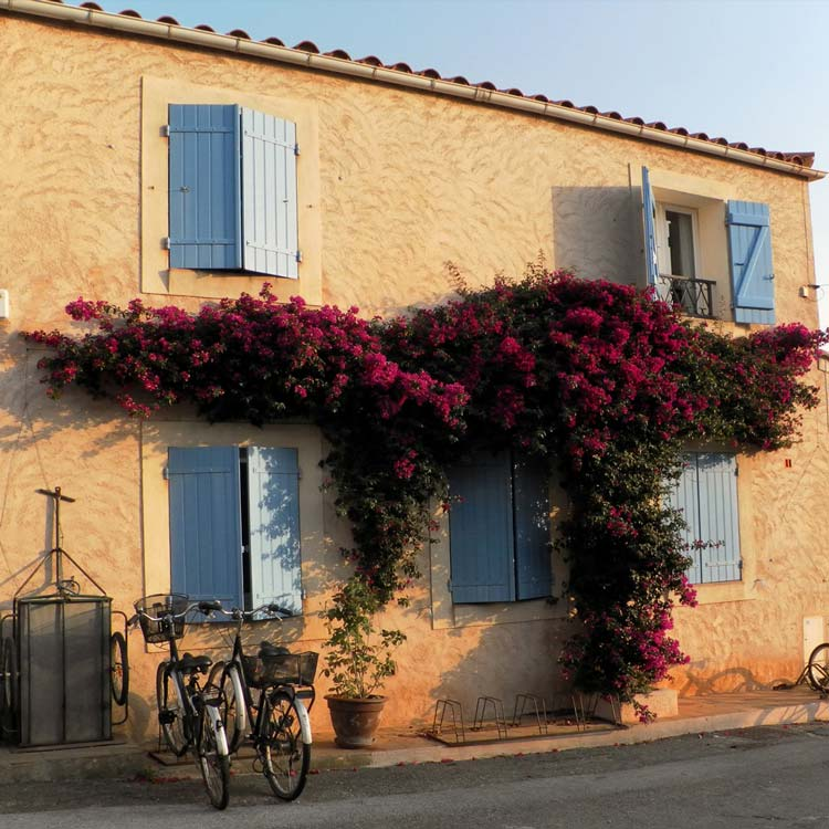 Typical House in St Raphael